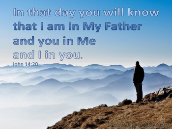 John 14-20 You WIll Know That You Are In Me And I Am In You blue.jpg