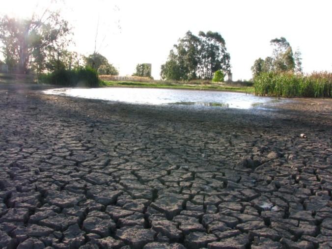 dry-creek2.jpg